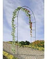Arche de jardin pour plantes grimpantes