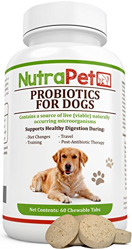 Best Chewable Probiotics for Dogs - Get Rid of Smelly Gas and Diarrhea + Added Prebiotic, Vitamins - Controls Stomach Upset, Itching, Hot Spots and Excessive Shedding (Super Vitamina B12 compare prices)