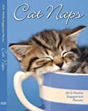 Cat Naps 2010 Weekly Engagement Planner (Calendar)
