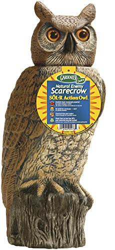 Gardeneer By Dalen Natural Enemy Scarecrow SOL-R Action Owl