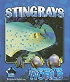 Stingrays (Underwater World)