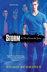 (FREE on 9/9) Storm by Brigid Kemmerer - http://eBooksHabit.com