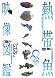 シンフォレストDVD 熱帯魚映像図鑑 バーチャル・アクアリウム 映像と音で愉しむ美しき熱帯魚の世界
