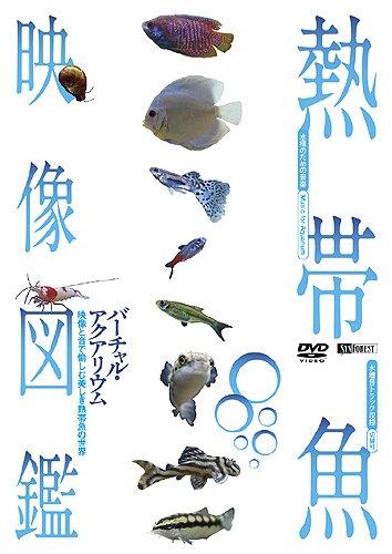 熱帯魚映像図鑑 バーチャル・アクアリウム 映像と音で愉しむ美しき熱帯魚の世界
