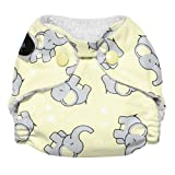 Imagine Baby Products Newborn Stay Dry All-In-One Snap Cloth Diaper, Trumpet