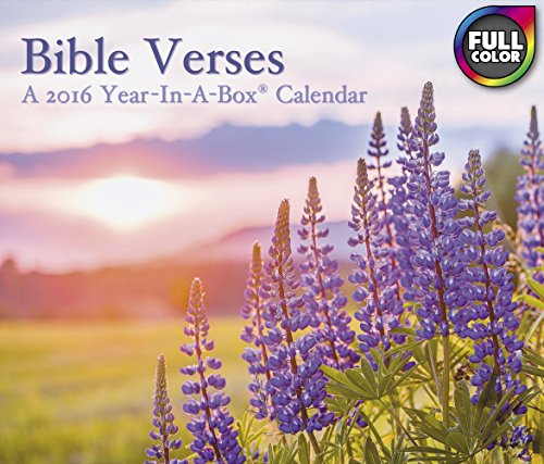 Bible Verses Year-In-A-Box Calendar (2016)