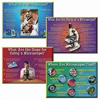 * How To Use A Microscope Bb Set