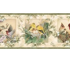 Chesapeake Wallcoverings Border - Bird Nest - Wallpaper ...