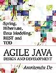 Spring, Hibernate, Data Modeling, RES...