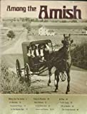 img - for Among the Amish book / textbook / text book