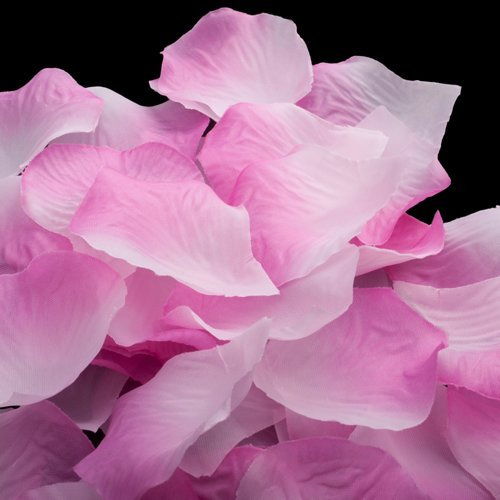 (Price/12 Packs)OpenPty™ Pink Rose Petals, Silk Petals, Wedding/Bridal Bouquets, Price/1680 Pieces