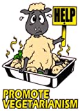 Help Promote Vegetarianism - Car Sticker