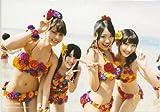 AKB48 公式生写真 さよならクロール 店舗特典 ソフマップ sofmap 【柏木由紀、木本花音】