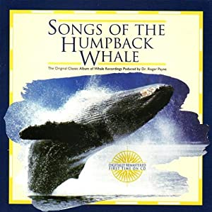humpback whale and payne Variation in humpback whale (megaptera novaeangliae) song humpback whale song lengths were measured from recordings time and place is similar ~payne and mcvay.