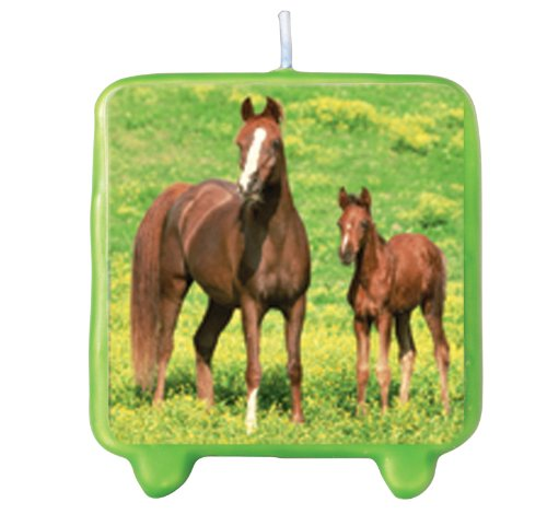 Wild Horses Molded Candle Party Accessory - 1