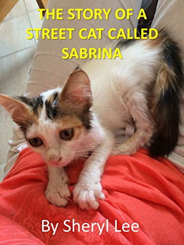 Free Kindle Book : The Story of a Street Cat Called Sabrina