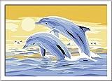 Ravensburger Malen nach Zahlen 28017 - Freunde des Meeres, Malset hergestellt von Ravensburger Spieleverlag