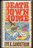 img - for Death Down Home book / textbook / text book