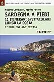 Sardegna a piedi : 11 itinerari spettacolari lungo la costa