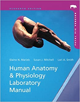 human anatomy physiology lab manual elaine n marieb Human anatomy & physiology laboratory manual, main version by elaine n marieb, lori a smith starting at $099 human anatomy & physiology laboratory manual, main version has 4 available editions to buy at alibris.