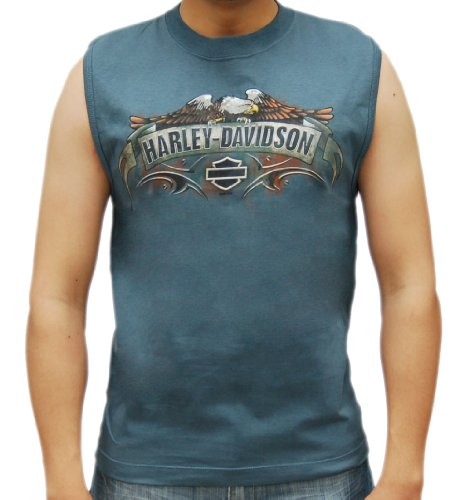 Harley-Davidson Mens Rustic Banner Blue Sleeveless Muscle T-Shirt (Medium)