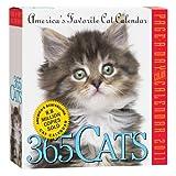 365 Cats 2011 Calendar