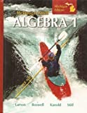 9780618888030: McDougal Littell: Algebra 1, Michigan Edition