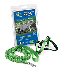 PetSafe Come With Me Kitty Harness and Bungee Leash, Large, Electric Lime