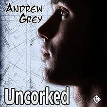 Uncorked (Gay Romance) | Livre audio Auteur(s) : Andrew Grey Narrateur(s) : Douglas Barron