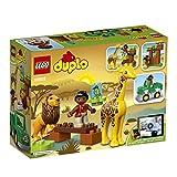LEGO Duplo 10802 - Savanne von LEGO