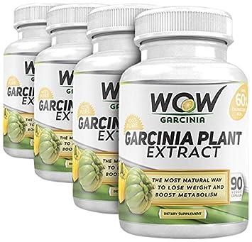 Garcinia cambogia capsules amazon