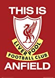 GB eye Ltd, Liverpool, This is Anfield, Maxi Poster, (61 x 91.5 cm), SP0041
