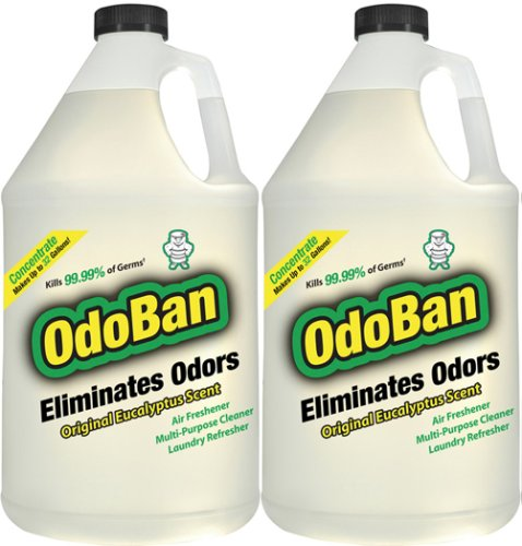 OdoBan Odor Eliminator 2 Gallons Concentrate Makes Up To 64 Gallons
