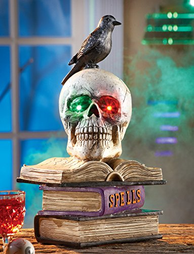 Skull On Books With Crow Halloween Party Decoration