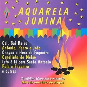 Amazon.com: Aquarela Junina: Ze Garrafao: MP3 Downloads