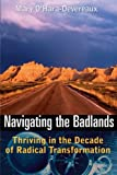 img - for Navigating the Badlands: Thriving in the Decade of Radical Transformation book / textbook / text book
