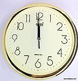 Ajanta Quartz Wall Clock (25.6cm x 25.6cm, Random Color)