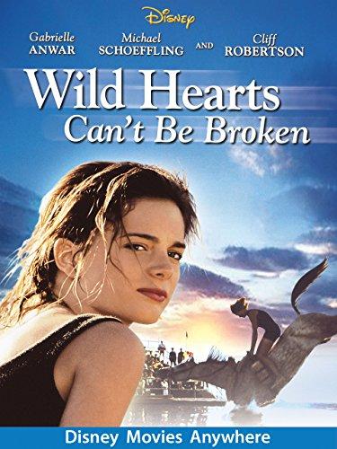 amazon com  wild hearts can u0026 39 t be broken  gabrielle anwar