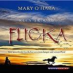 Mein Freund Flicka | Mary O'Hara