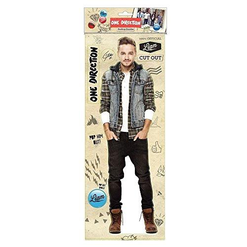 One Direction Liam Desktop Standee NEW 2014