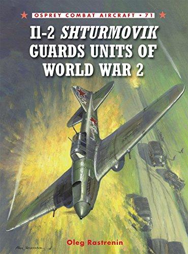 Il-2 Shturmovik Guards Units of World War 2 (Combat Aircraft)