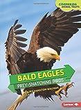 Bald Eagles: Prey-Snatching Birds (Comparing Animal Traits)