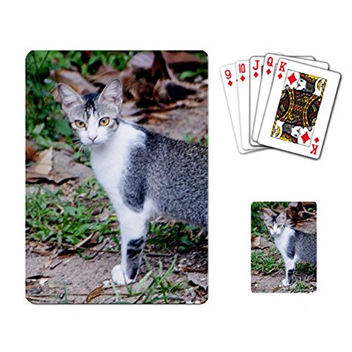 [Cat and Natural Playing Cards] (Bicycle Themed Halloween Costumes)