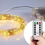 Lyhoon LEDジュエリーライト 5m 50球 電池式 点灯8パターン・コントローラ付 防雨仕様 (5M, ウォームホワイト) [並行輸入品]