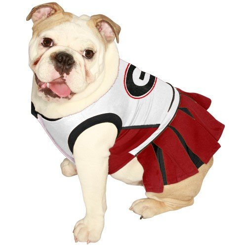 NCAA University of Georgia Bulldogs Cheerleader Dog Outfit, Medium
