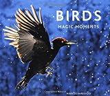 Birds Markus Varesvuo