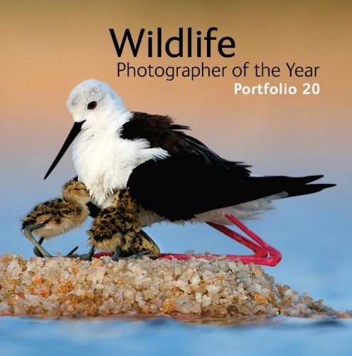 Wildlife Photographer of the Year Portfolio 20