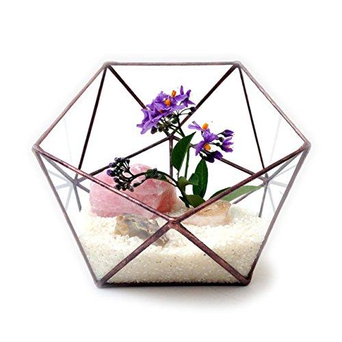 icosahedron-terrario-de-cristal-geometrico-grande-jardineria-maceta-maceta-diseno-moderno-de-cristal