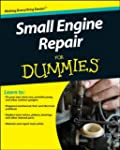 Small Engine Repair For Dummies (For...