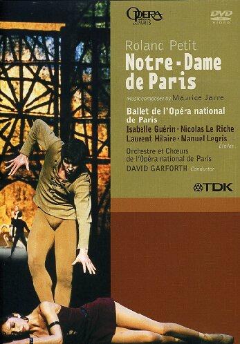 Jarre: Notre Dame De Paris [DVD] [2006]